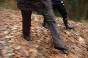 Abb Spaziergang im Wald